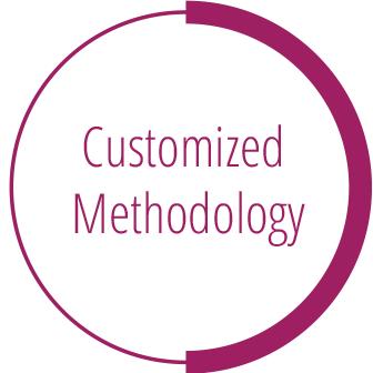 Customized Methodology
